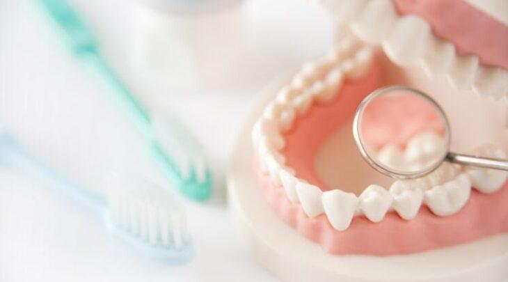 デンタルケア 歯科 歯磨き 健診